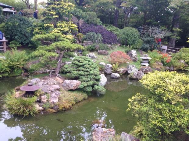 tea-garden-1